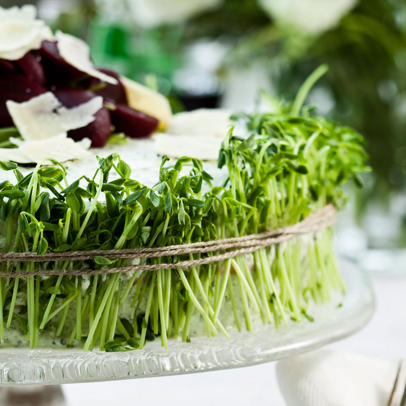 Recept: Sandra Palmqvist Foto: Anette Nilsson