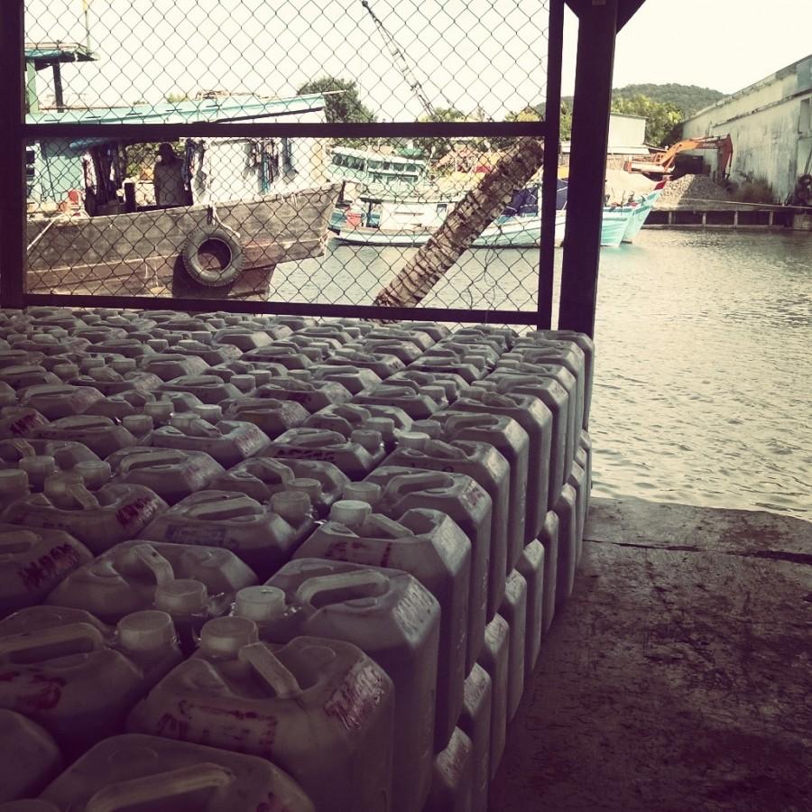 Fisksås väntar vid floden på att skeppas ut i världen