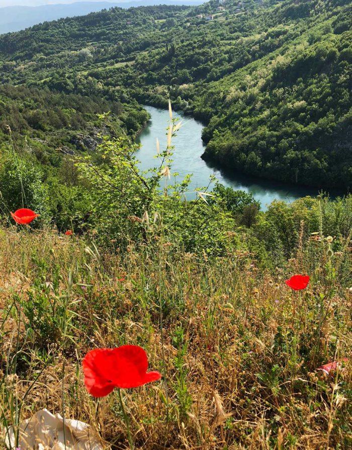 Floden Cetina som rinner ut i havet vid staden Omis.